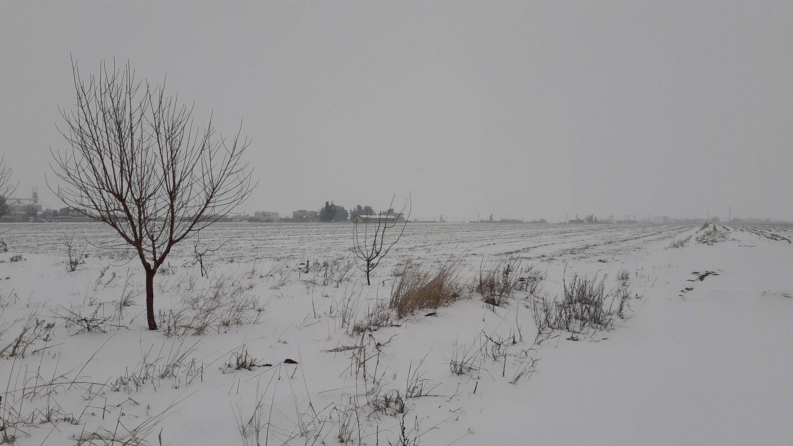 Kızıltepe Ovası kar manzarası